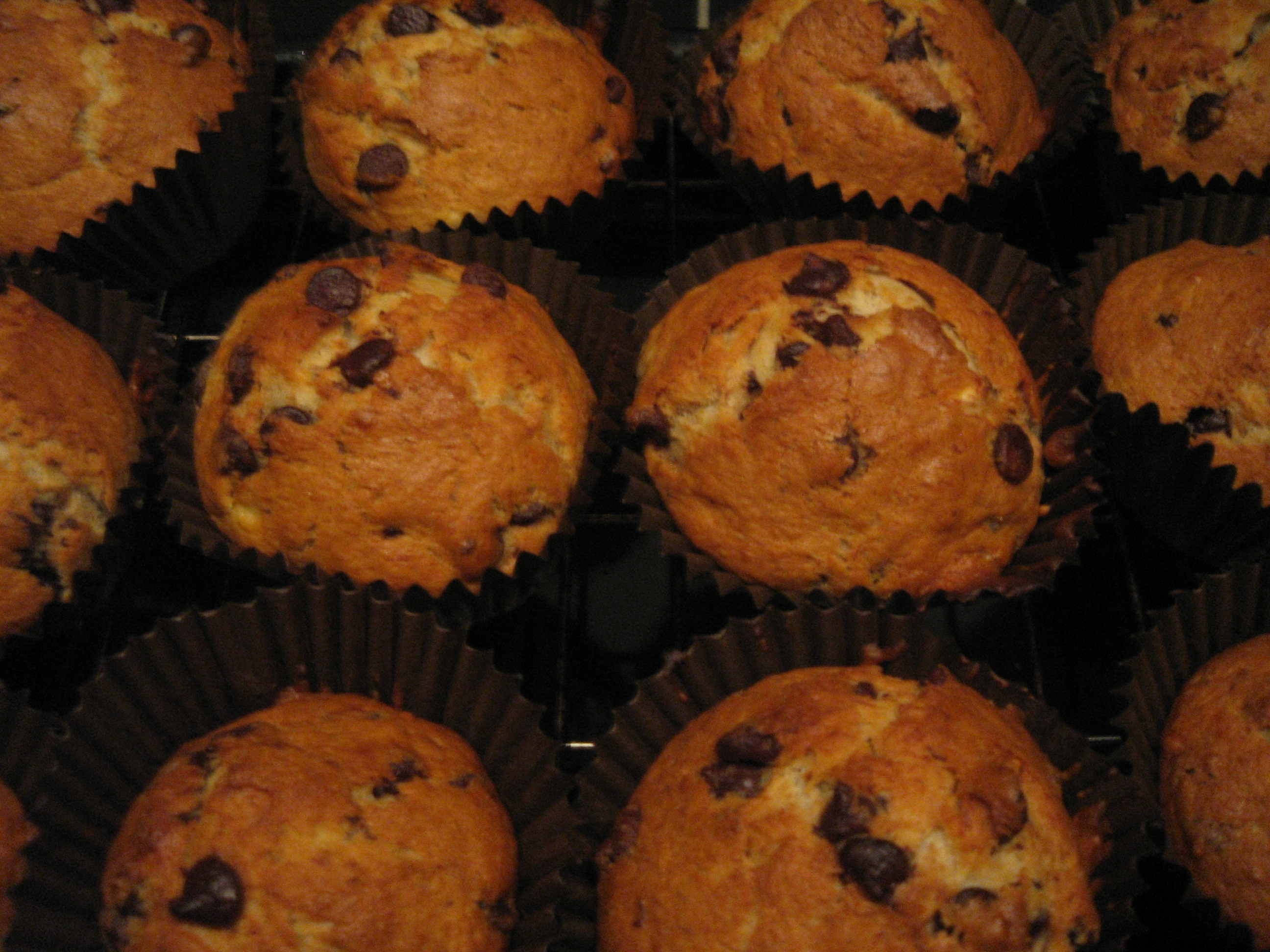 Coconut Banana Chocolate Chip Muffins (Gluten-free and Paleo) | The ...